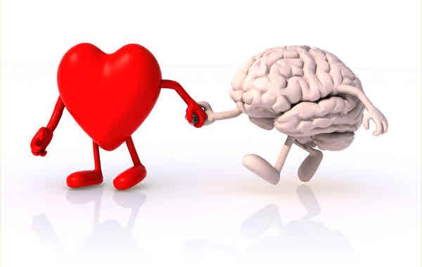 Heart & Mind 600x380.jpg